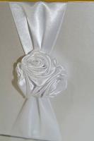 CARTEA MIRILOR detaliu floare