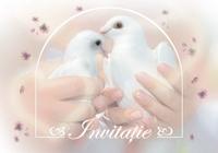 Invitaţie de nuntă IN04