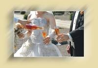 Invitaţie de nuntă IN21
