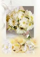 Invitatie de nunta IN23